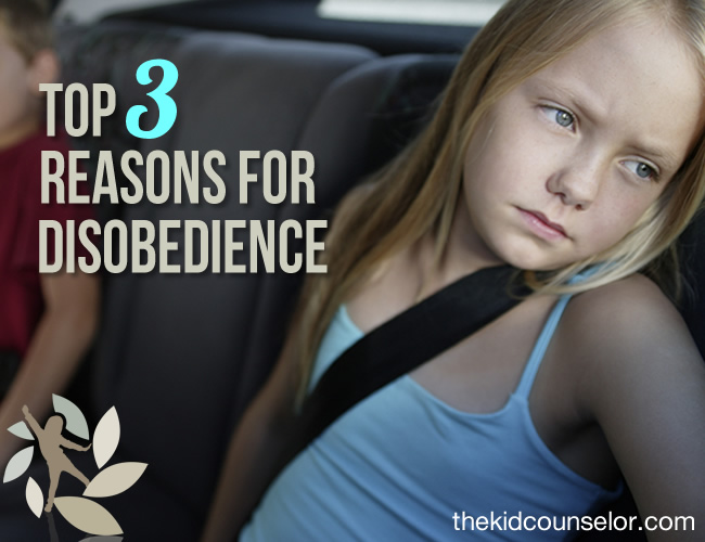 Top Three Reasons for Disobedience